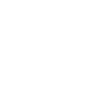 Globe_Africa_white